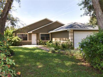 4018 ELM STREET, Lady Lake, FL, 32159,