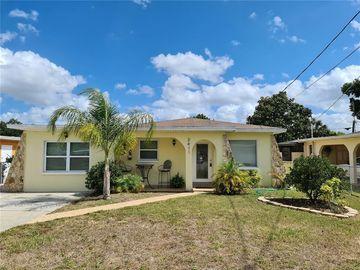 3411 W AILEEN STREET, Tampa, FL, 33607,