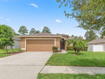 18411 WAYDALE LOOP, Hudson, FL, 34667,