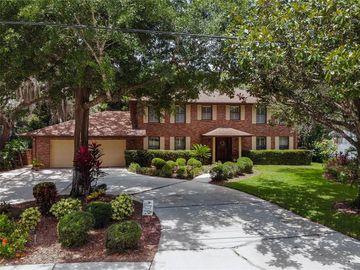 728 DRUID HILLS ROAD, Temple Terrace, FL, 33617,
