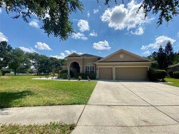 18315 BANKSTON PL, Tampa, FL, 33647,