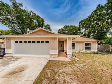14101 DAVENPORT PLACE, Tampa, FL, 33625,