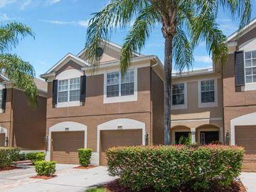 8451 SANDY BEACH STREET, Tampa, FL, 33634,