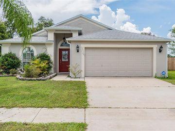 24304 BRANCHWOOD COURT, Lutz, FL, 33559,