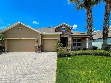 22543 CHEROKEE ROSE PLACE, Land O Lakes, FL, 34639,