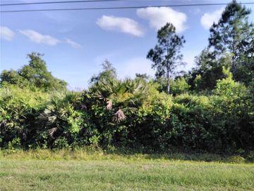 None QUINLAN ST 1 & 2 STREET, Orlando, FL, 32833,