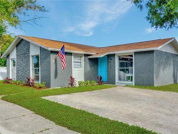 8705 SAGE COURT, Tampa, FL, 33634,