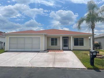 11229 COREY PAVIN LANE, San Antonio, FL, 33576,