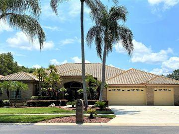 985 CARSTAIRS COURT, Tarpon Springs, FL, 34688,
