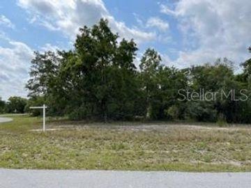 None CARIBBEAN DRIVE, Spring Hill, FL, 34606,