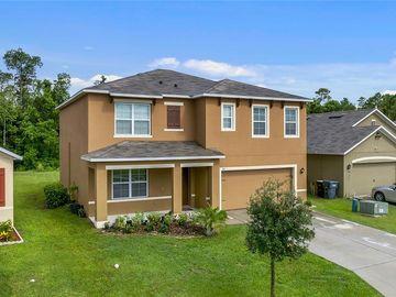 362 BRIAR PATCH LOOP, Davenport, FL, 33896,