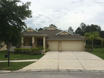 20027 OAKFLOWER AVENUE, Tampa, FL, 33647,