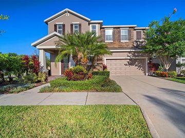 14904 SWIFTWATER WAY, Tampa, FL, 33625,
