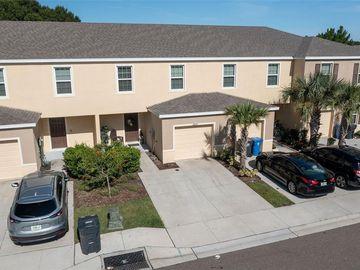 12909 SHADY FERN LANE, Gibsonton, FL, 33534,