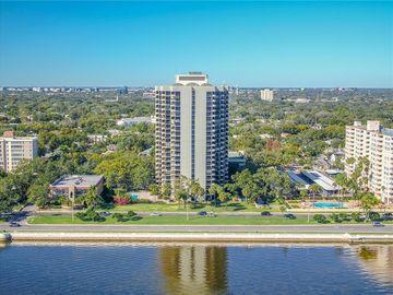 Swimming Pool, 2413 BAYSHORE BOULEVARD #2302 & 2304, Tampa, FL, 33629,