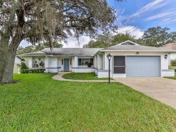 2389 AINSWORTH AVENUE, Spring Hill, FL, 34609,