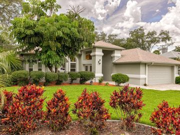 2814 COUNTRY WOODS LANE, Palm Harbor, FL, 34683,