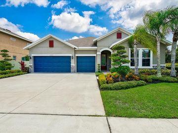 1207 CADENCE COURT, Brandon, FL, 33511,