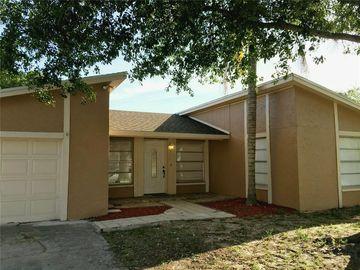 10109 ROYAL ACRES COURT, Tampa, FL, 33615,