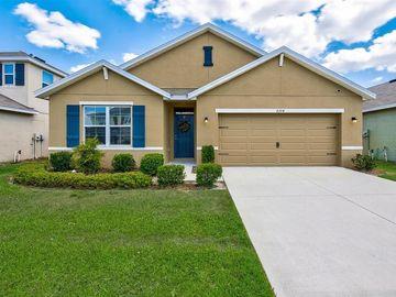 8204 BILSTON VILLAGE LANE, Gibsonton, FL, 33534,