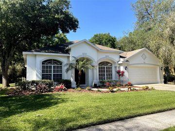 5027 SOUTHAMPTON CIRCLE, Tampa, FL, 33647,