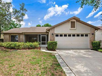 1072 ROLLING OAKS AVENUE, Tarpon Springs, FL, 34689,