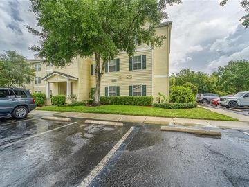 18231 BRIDLE CLUB DRIVE, Tampa, FL, 33647,