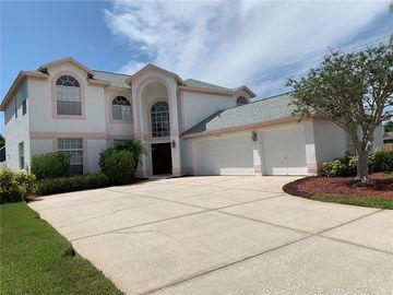 8710 MAPLE LAKE PLACE, Tampa, FL, 33635,
