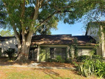 7813 LEMONWOOD COURT #226, Temple Terrace, FL, 33637,