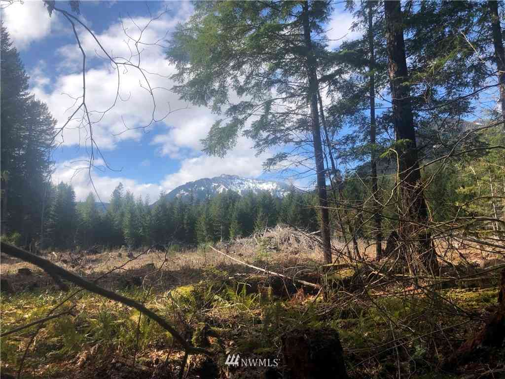 0 Cannon Road, Packwood, WA, 98361,
