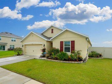 8129 BILSTON VILLAGE LANE, Gibsonton, FL, 33534,