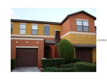 30133 MOSSBANK DRIVE, Wesley Chapel, FL, 33543,