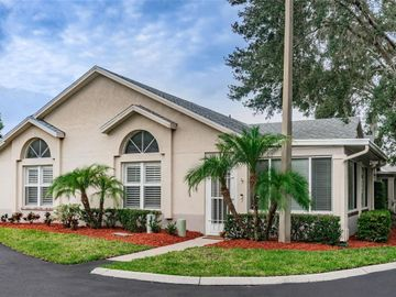 1132 GOLFVIEW WOODS DRIVE #1132, Ruskin, FL, 33573,