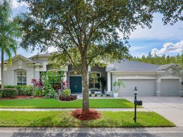 18122 EMERALD BAY STREET, Tampa, FL, 33647,