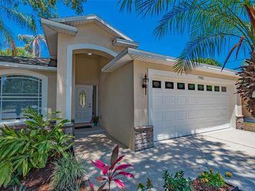7902 N BOULEVARD, Tampa, FL, 33604,
