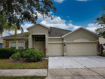 11352 CALLAWAY POND DRIVE, Riverview, FL, 33579,