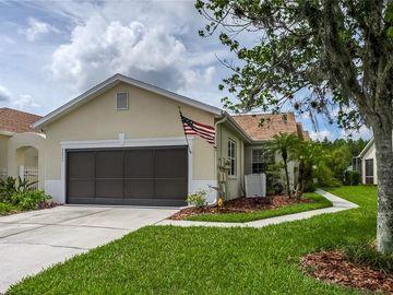 20822 JAFFA LANE, Land O Lakes, FL, 34637,