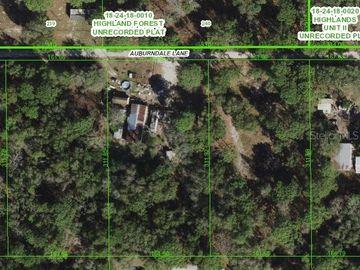 16426 AUBURNDALE LANE, Spring Hill, FL, 34610,
