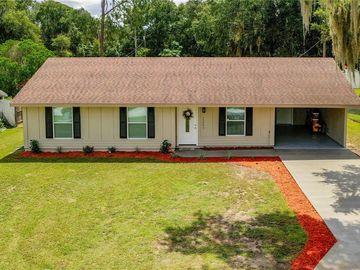 15246 SABLE AVENUE, Groveland, FL, 34736,