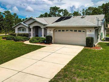 12437 MEINERT AVENUE, Brooksville, FL, 34613,