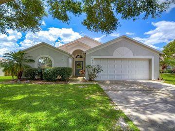 24337 ROLLING VIEW COURT, Lutz, FL, 33559,