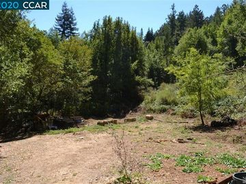 11190 Mc Peak Road, Forestville, CA, 95436,
