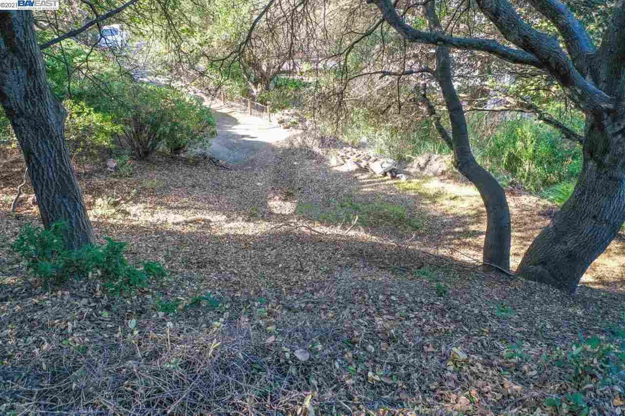 20 Lucille Way, Orinda, CA, 94563,