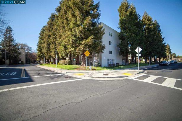 3173 Wayside Plaza #313