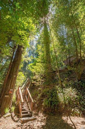 126 Redwood Drive