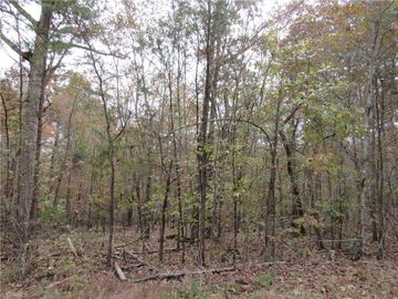4 Shady Hollow Road, Staley, NC, 27355,