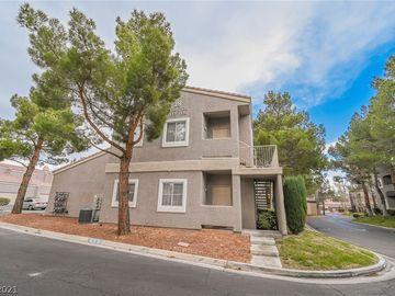 5250 S Rainbow Boulevard #1133, Las Vegas, NV, 89118,