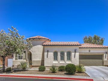 3012 Grasswren Drive, North Las Vegas, NV, 89084,