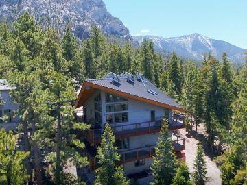 2470 Avalanche Trail, Mount Charleston, NV, 89124,