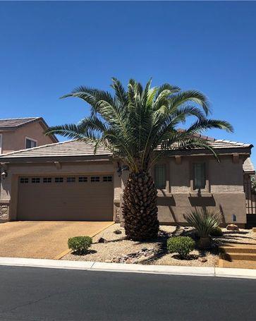 3524 Morgan Springs Avenue North Las Vegas, NV, 89081